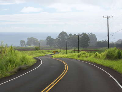 Honomū  |  Road and farmland
