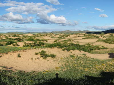 Khustayn Uul National Park  |  Vegetated dune field