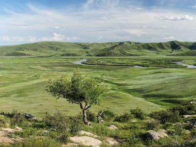 Orkhon Valley  |  Panorama