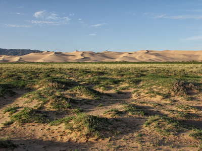 Khongoryn Els  |  Vegetated hummocks and dune field
