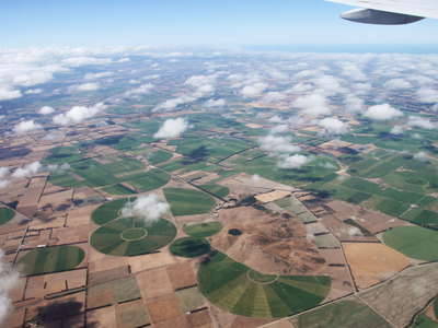 Canterbury Plains with Burnt Hill