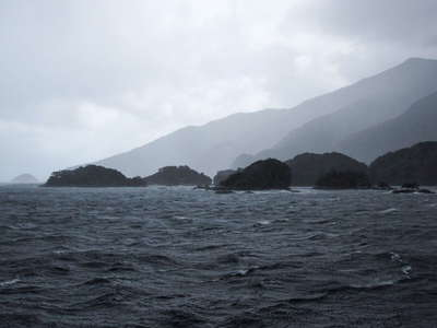 Doubtful Sound / Patea  |  Shelter Islands