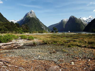 Milford Sound / Piopiotahi  |  Low tide