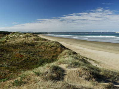 Ninety Mile Beach  |  Panorama of Waipapakauri Beach