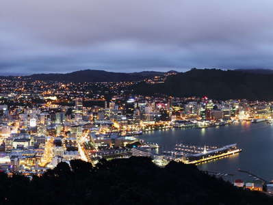 Wellington  |  Night panorama