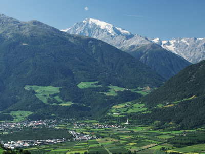 Vinschgau Valley with Ortler
