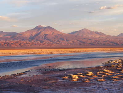 Salar de Atacama  |  Laguna de Chaxa at sunset