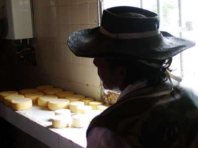 Tafí del Valle  |  Cheese production