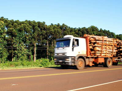 Misiones  |  Timber transport