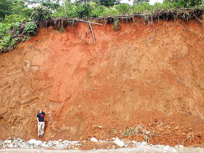 Tropical soil profile