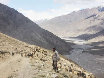 Tanimas Valley  |  Herder