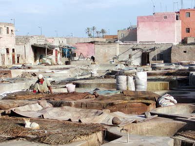 Marrakech  |  Tanneries
