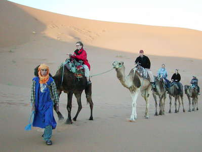 Erg Chebbi  |  Dromedary ride