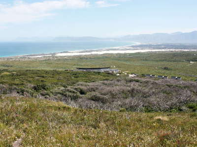 Grootbos NR with milkwood forest and Walker Bay