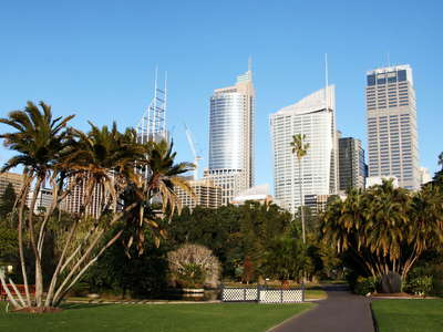 Sydney  |  Royal Botanic Gardens and CBD