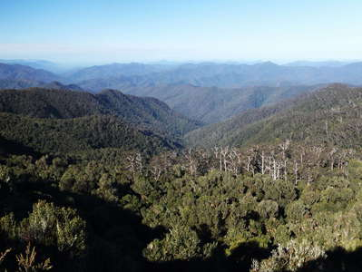 New England NP with Wright's Lookout