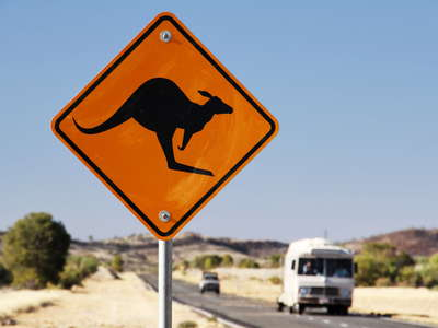 Stuart Highway  |  Kangaroo sign