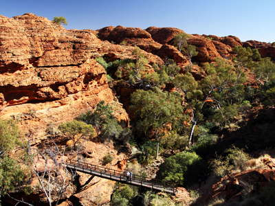 Watarrka NP  |  Kings Canyon
