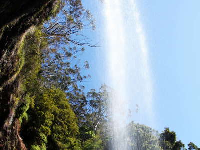 Springbrook NP  |  Twin Falls