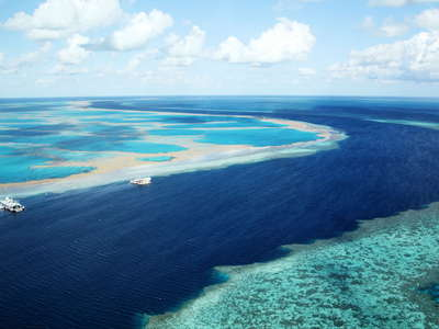 Great Barrier Reef  |  Hook and Hardy Reefs