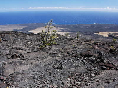 Hawai'i Volcanoes NP  |  Lava flows