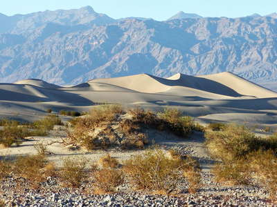 Death Valley  |  Dune field with nabkha