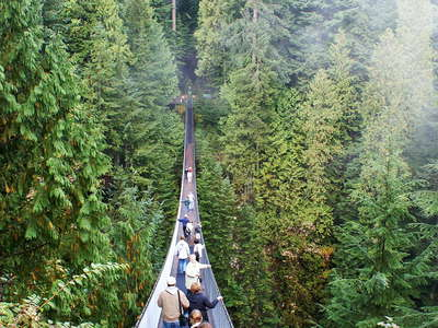 North Vancouver  |  Capilano Suspension Bridge