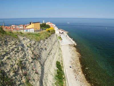Piran  |  Coastal cliff