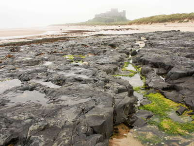Northumberland coast with Bamburgh Castle