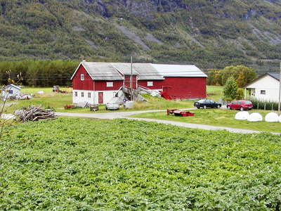 Manndalen  |  Potato cultivation