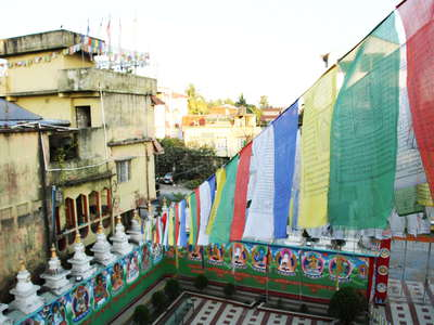 Siliguri  |  Salugara Monastery with prayer flags