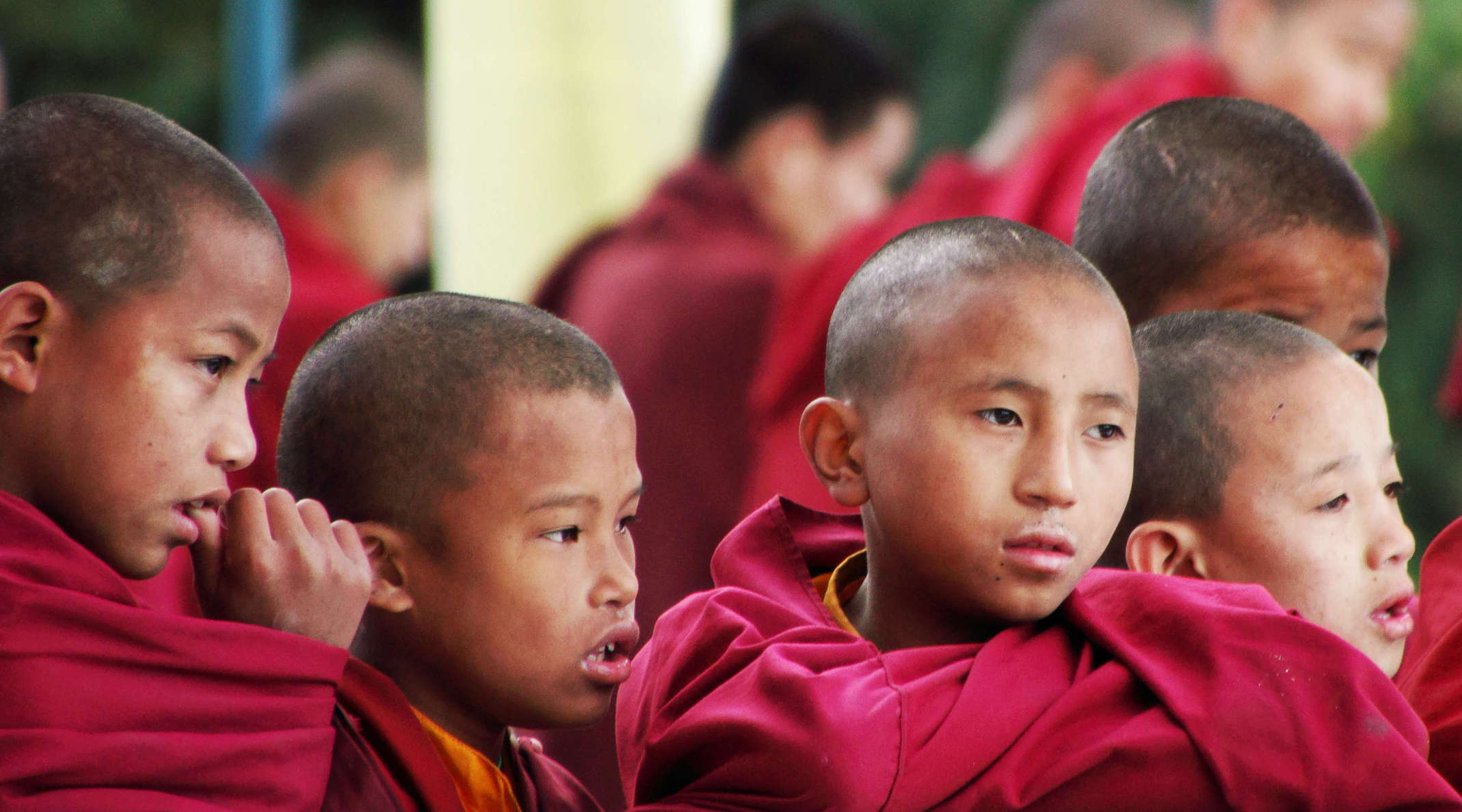 Darjeeling Young Monks At Dali Monastery The World In Images