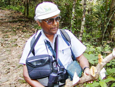 Sinharaja Forest Reserve  |  Scientist