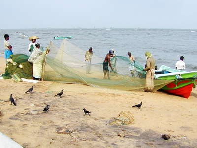 Negombo  |  Fisheries