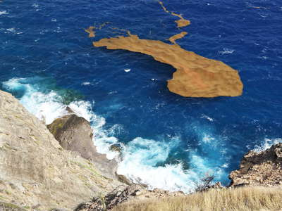 Southern coast with Sargassum seaweed