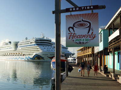 St. John's | Redcliffe Quay and cruise ships