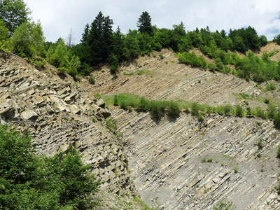 Carpathian Mountains | Flysch layers